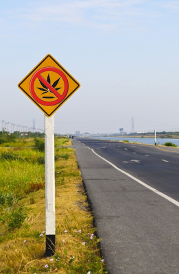 No marijuana for DOT employees